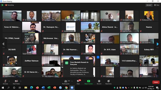 Participation in the Webinar Workshop
